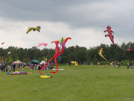 Drachen entern den Stadtpark Norderstedt – Drachenfestival