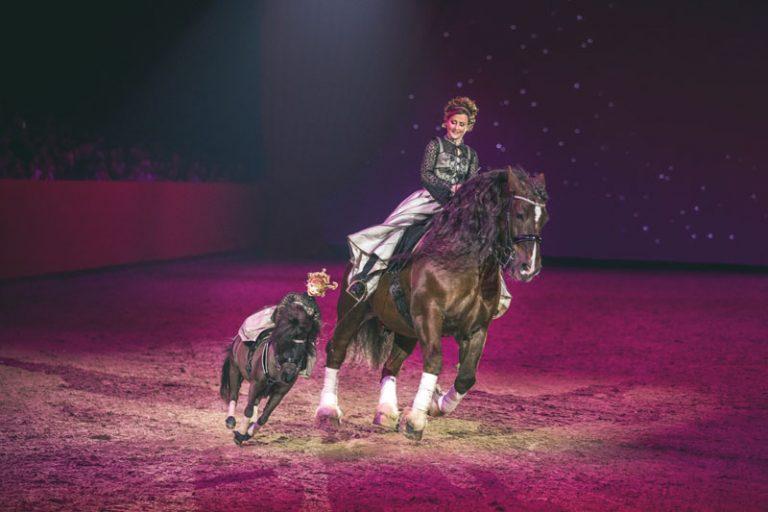HansePferd Hamburg findet nicht statt