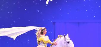 """""""Stars"""" – der neue Show-Abend der HansePferd Hamburg"""