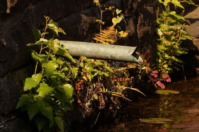 Die optimale Abwasserentsorgung im Eigenheim